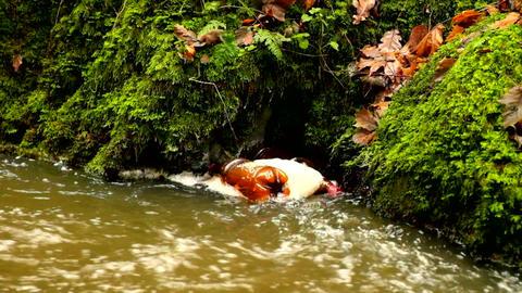 Slow motion. Turning of plastic bottle in foam on dirty water bellow rapids. Ter Footage