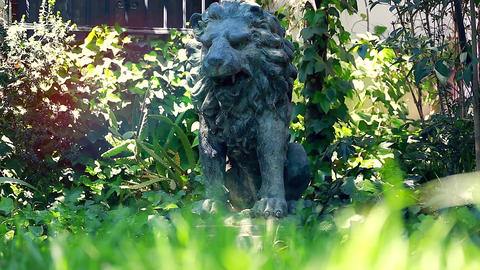 Statue of a Lion in the Garden Footage