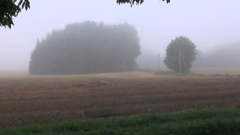 Misty countryside landscape Footage