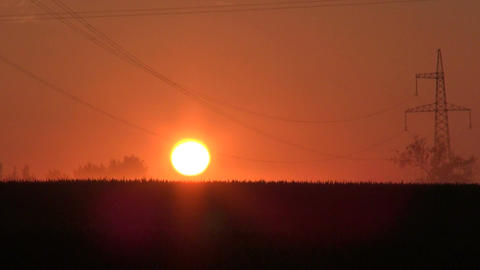 Landscape with electrical pylons at dawn Footage