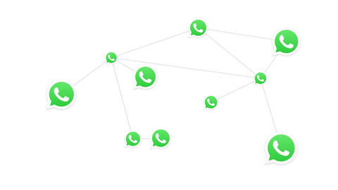 Whatsapp Mobile Messaging App Logo Conceptual Network Animation