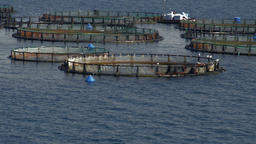 Fish farm in the calm blue waters of the bay of Corfu, Greece. Workers serve one Image