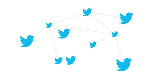 Twitter Online News and Social Networking Service Logo Conceptual Network