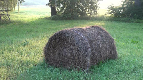 Round stack of straw Live Action