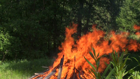 Bonfire burning on midsummer day Footage