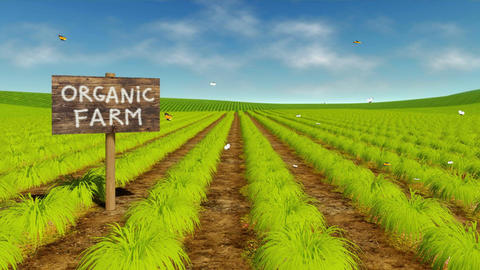 Natural organic eco farming field cinemagraph Animation