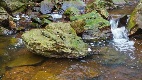 Little Mountain Creek Waterfall Footage