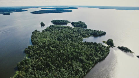 View of a large green island among the lake. View from a flight altitude Filmmaterial