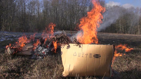 Rubbish in cardboard boxes burning in spring Footage