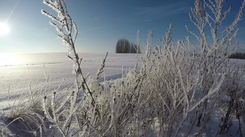 Frosted landscape on sunny winter day, time lapse 4K Footage