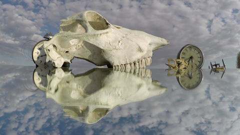 Two clocks and a horse skull on the mirror beneath the cloudy sky, time lapse 4K Footage