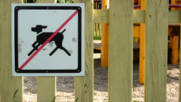 sign - no dogs. Playground in background Footage