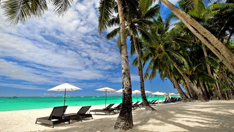 Tropical beach with palm trees, umbrellas and chairs for relaxation. Philippines Footage