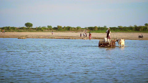 Burmese local people crossing the Irrawaddy river shoal driving wooden cart Footage