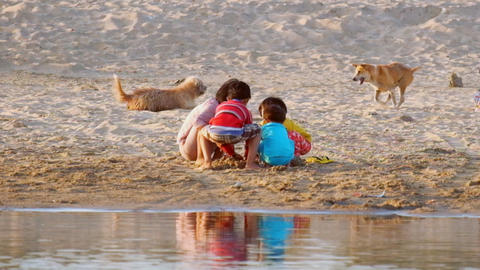 Village Children And Dogs Playing In Sand At Irrawaddy River. Myanmar stock footage