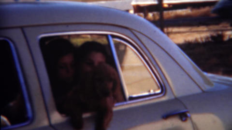 1952: Girls letting new puppy hang out car window Live Action
