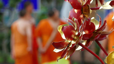 Decorative Flowers Monks Buddhism 4k Footage