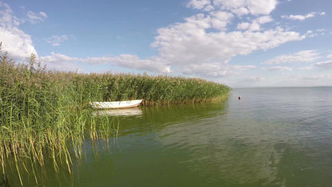 Boat between reeds in the sea bay, time lapse 4K Footage