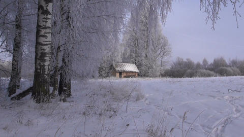 Landscape with a hut and frosty birch trees Footage