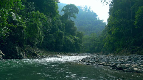 Foaming river with stony banks running at foot of mountains covered with jungle Footage