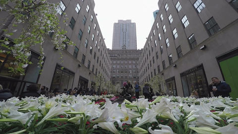 New York, USA -The Rockefeller Center Channel Gardens day view Live Action