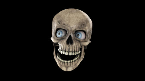 Animated skull with eyes and alpha channel Animation