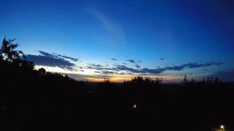 Sunset in the Savannah Footage