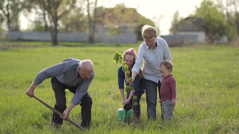 Multi generation family planting tree outdoor Footage