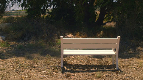 White bench placed in rural area
