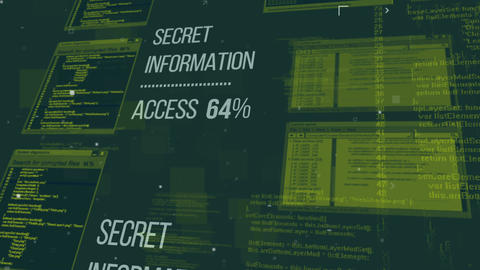 Hacking the Secret information database, Stock Animation