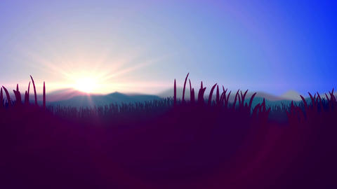 Silhouette of Grass Flowers against a Sunset Animation