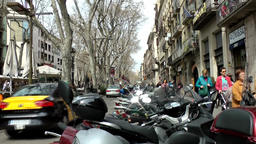 Spain Barcelona 025 bare trees and scooter in La Rambla Footage