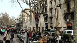 Spain Barcelona 028 closed sunshades and bare plane trees in La Rambla Footage