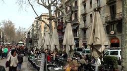 Spain Barcelona 028 closed sunshades and bare plane trees in La Rambla Footage