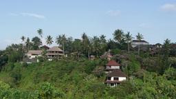 Village on the hill,Ubud,Indonesia Footage