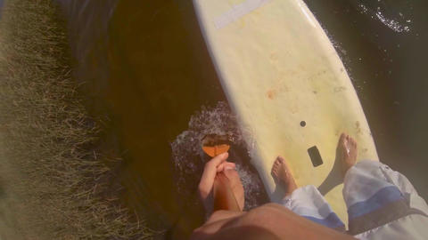 Paddle POV of man stand up paddleboarding ภาพวิดีโอ