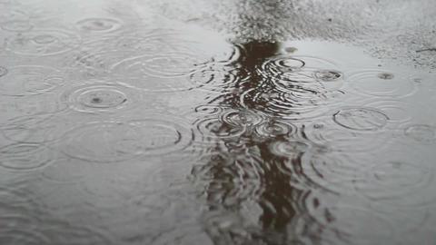 Rain Falls In City Footage
