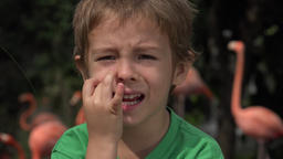 Anxious Young Boy Toddler Live Action