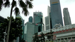 Singapore 065 downtown cityscape and palm trees Footage
