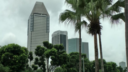 Singapore 004 Business Tower Between Trees stock footage