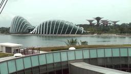 Singapore 011 ferris wheel and tropical garden Footage