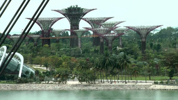 Singapore 012 futuristic towers of tropical garden Footage
