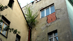 old buildings with trees - window - dilapidated Footage
