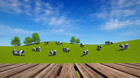 Perspective wood table and cows graze on green meadow Animation