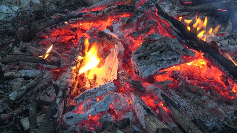 Bonfire abstract nature background Footage