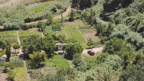 Vegetable Garden Car Turns Footage