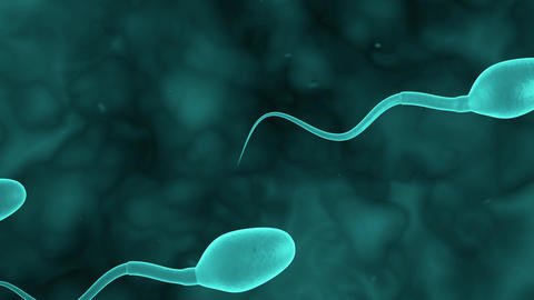 SPERM blue Animation