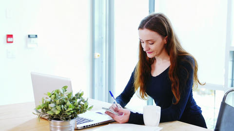 Business executive writing on diary while looking at laptop Live Action