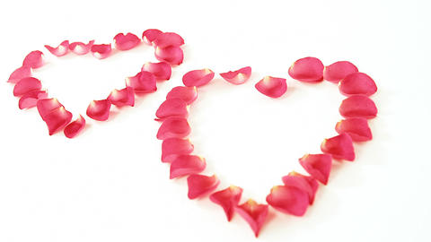 Rose petals forming heart shape against white background Live Action