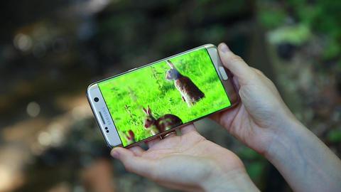 Woman Watching YouTube Video On Smartphone Image